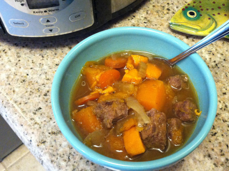 Beef and Butternut Stew
